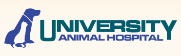 University Animal Hospital