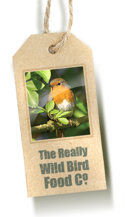 Really Wild Bird Food Company