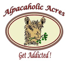 Alpacaholic Acres